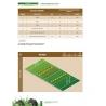 La prépa physique Rugby - Le développement de la Force